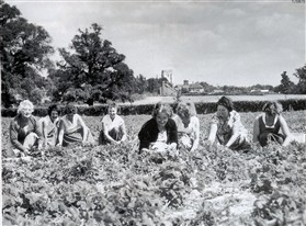 Photo:Fruit pickers on the Roods, White Arch Fruit Farm