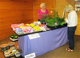 Photo:Carole Girling's plant stall